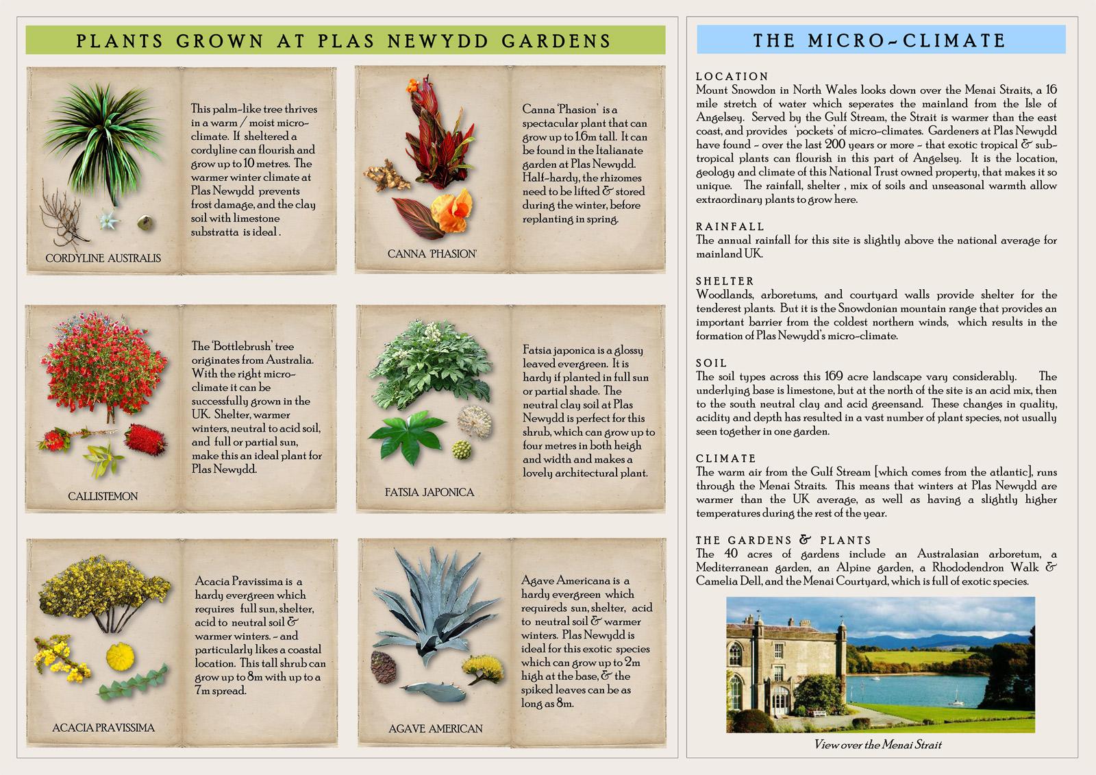 National Design Academy Diploma Garden Design Presentation 07