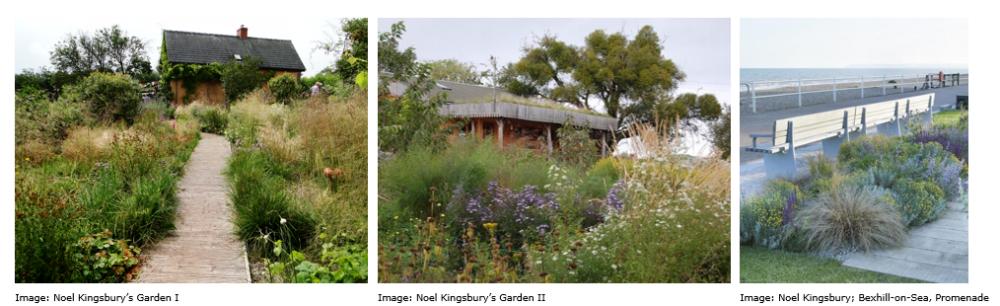 Wildlife Friendly Gardens | National Design Academy