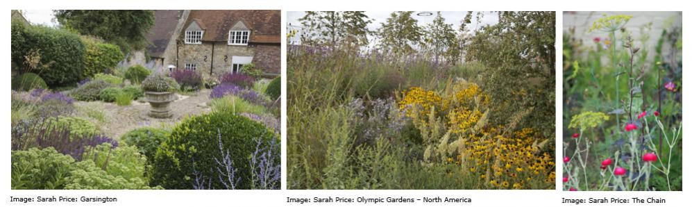 Wildlife Friendly Gardens| National Design Academy