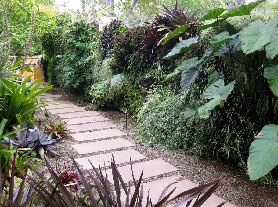 Creating a Tropical Garden Inspiration