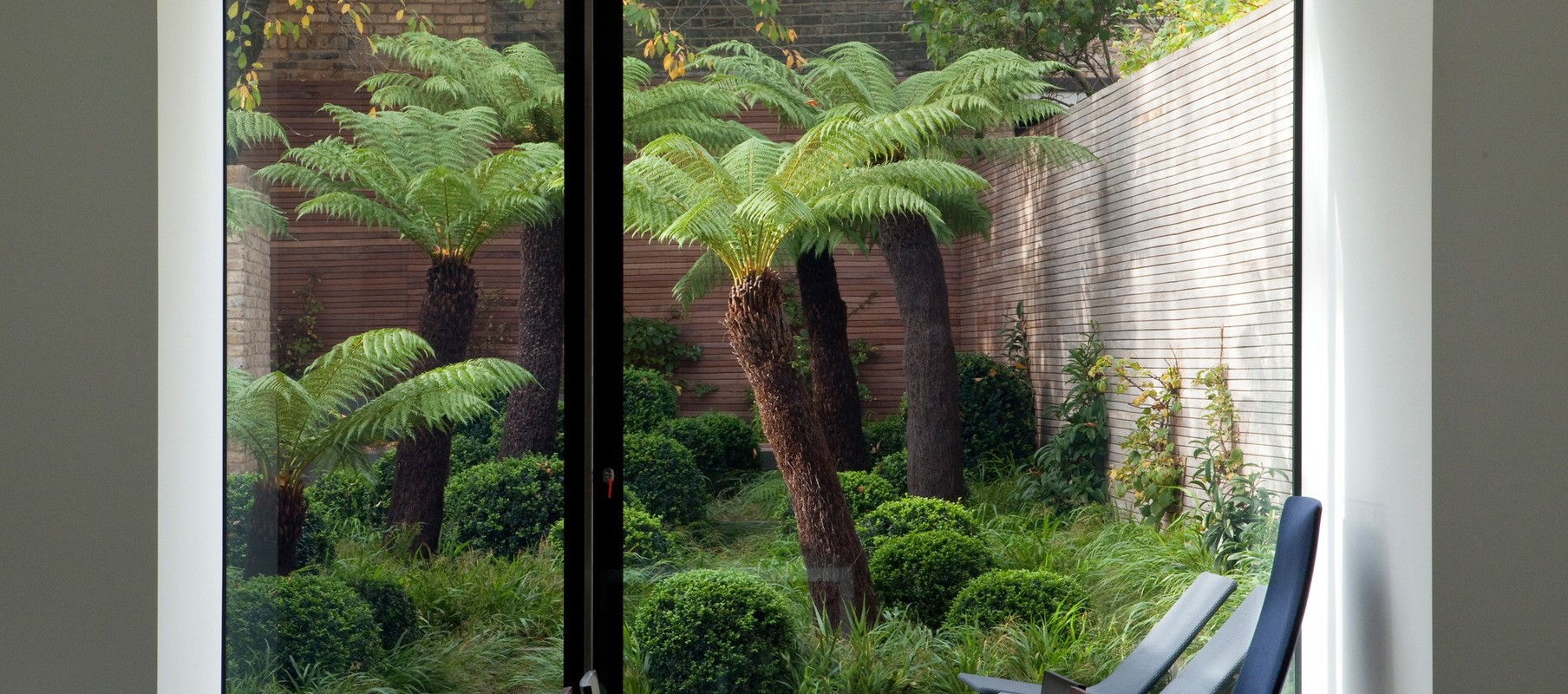 Garden with palm trees pictured from inside