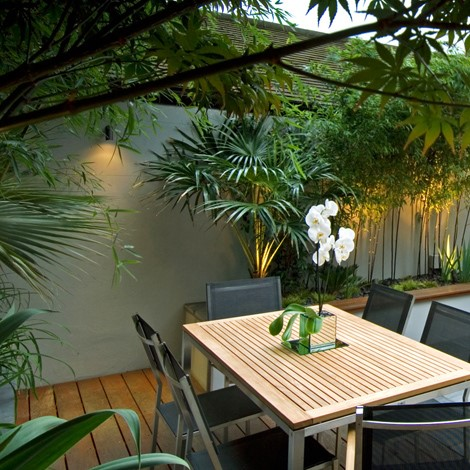 Simple garden lighting with lush tropical plants