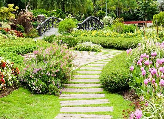 Diploma In Professional Garden Design National Design Academy