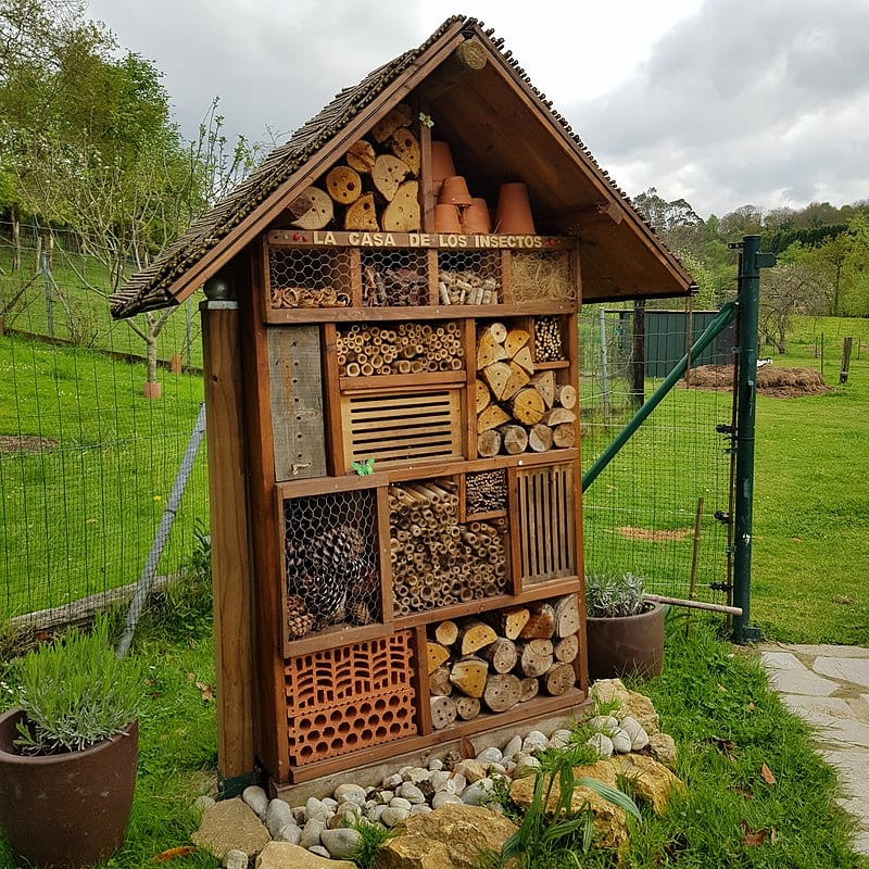 insect hotel garden trend